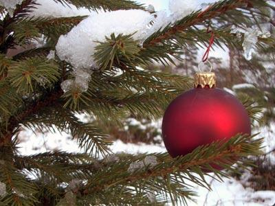 Kalėdos (antra diena)