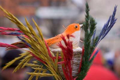 40-ties paukščių diena
